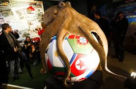 Exit polls paul the octopus
