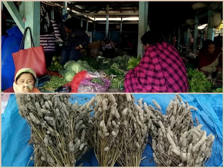 tamenglong-and-imphal-visit-feb