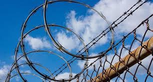Miyah poems- fence 3